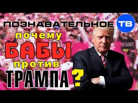 Почему бабы против Трампа (Познавательное ТВ Артём Войтенков) - DomaVideo.Ru