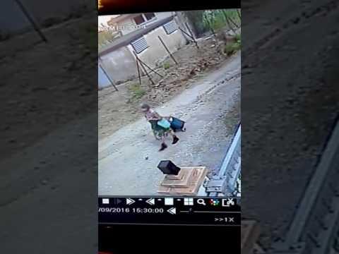 video Italia Nelli