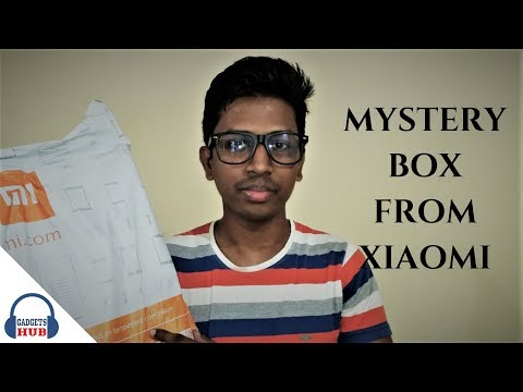 Mystery box received from Xiaomi India | Gadgets Hub