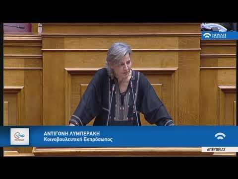 Α.Λυμπεράκη (Κοινοβ.Εκπρ.ΠΟΤΑΜΙ)(Ψήφος Εμπιστοσύνης στην Κυβέρνηση) (09/05/2019)
