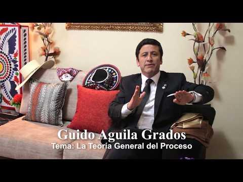 Programa 25 - La Teoría General del Proceso - Tribuna Constitucional - Guido Aguila