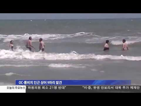 남가주 해변서 잇따라 상어 출몰 5.2.17 KBS America News