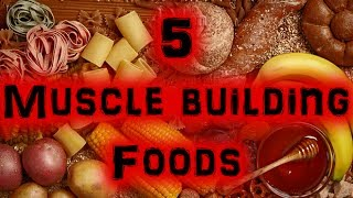 5 Great Muscle Building Foods [Full HD]