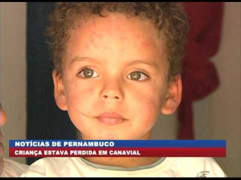 [BRASIL URGENTE PE] Em Goiana, menino perdido na mata é encontrado
