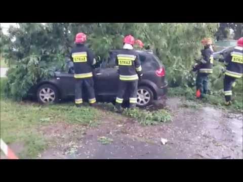 Bydgoszcz. Przy ulicy Baczyńskiego przewróciło się drzewo