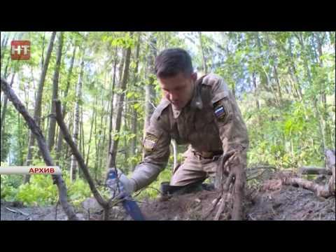 В Новгородской области завершился осенний этап Вахты Памяти  2016 года