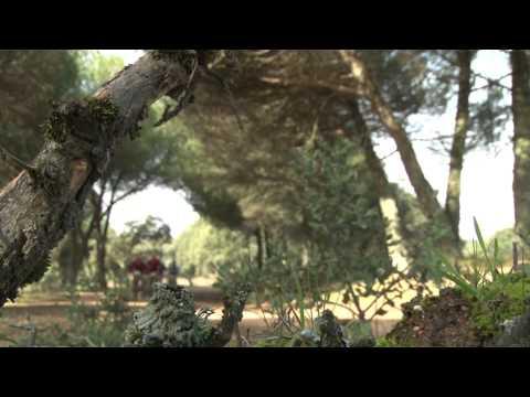 Etapa 3 Andalucia Bike Race 2014