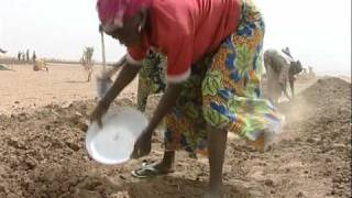 FAO in Action: Food Crisis in Niger