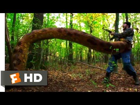 Anacondas: Trail of Blood (2009) - Life Is Hard, Huh? Scene (5/10) | Movieclips
