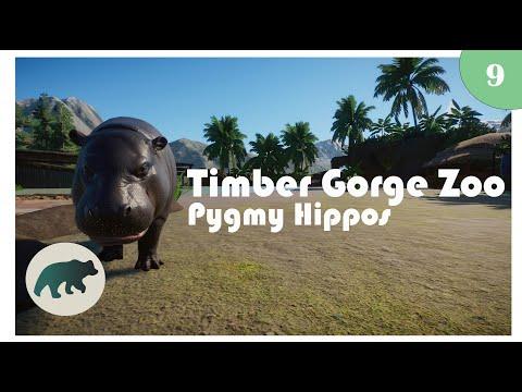 Timber Gorge - Episode 9 - Pygmy Hippos | Planet Zoo
