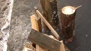 Депутаты против отмены моратория на экспорт леса