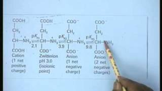 Lecture - 2 Characteristic Features of Enzymes