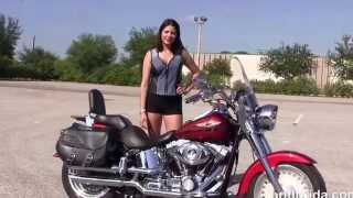 5. Used 2008 Harley Davidson FatBoy Motorcycles for sale in Tampa Fl