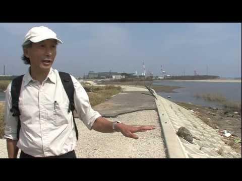 震災から半年後の蒲生干潟