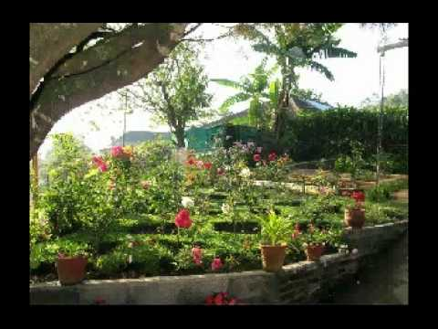 Video von Rheinberg Homestay