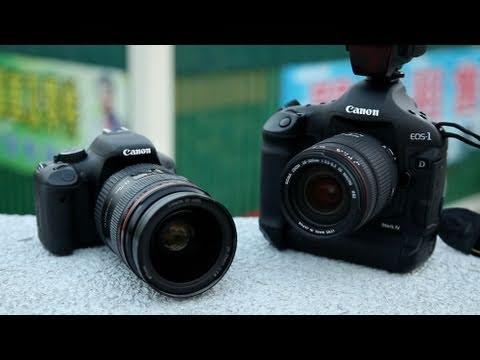 """Pro DSLR + Cheapo Lens vs """"Cheapo"""" DSLR + Pro Lens"""