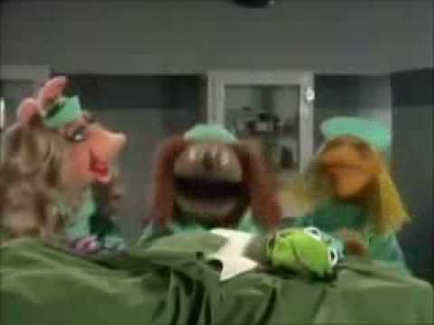 The Muppets: Veterinarian's Hospital