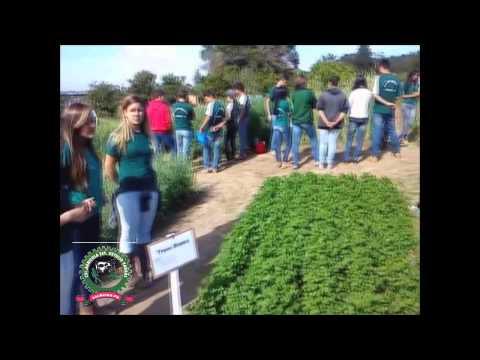 Colégio Agrícola Getúlio Vargas