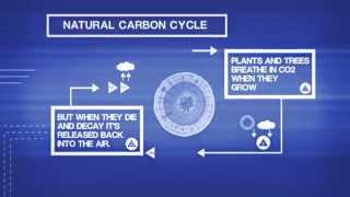 Learn more about the Carbon Cycle & how Biochar Adds a New Dimension