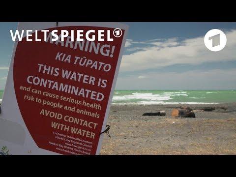 Neuseeland: Verseuchtes Trinkwasser | Weltspiegel