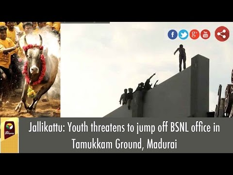 VISUALS: Youth Threatens to Jump off BSNL Office in Tamukkam Ground, Madurai | Jallikattu Row (видео)