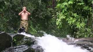 Pesilat Muda Gurun
