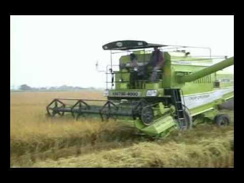 Video KARTAR COMBINE HARVESTERS::-Rice harvesting by India's Best Harvester.... download in MP3, 3GP, MP4, WEBM, AVI, FLV January 2017
