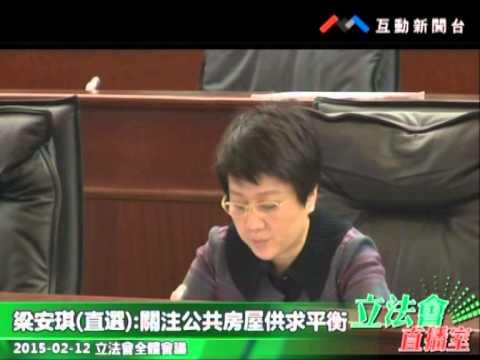 梁安琪  20150212立法會全體會議