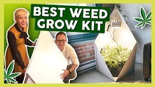 BEST Weed Grow Kit for Beginners! (2019) by That High Couple