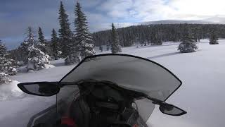 5. 2020 Ski-Doo Expedition SE 900 ACE Turbo off trail in fresh pow !