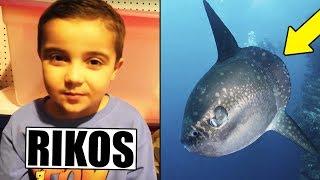 Tubettaja pahoinpiteli omia lapsiaan! Valtava kala löydettiin Australiassa