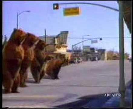 Pepsi Bears