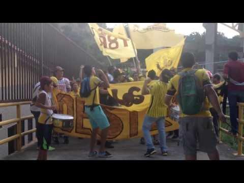 Banda 1981 Entrando A La Tribuna! - Tribu Guerrera - Trujillanos