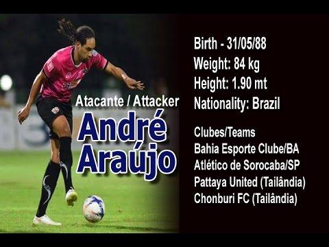 André Araújo Striker 2015