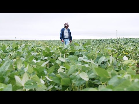 The Seeds of Life – A Recipe for the Future (Ep #7) - New Holland Agriculture