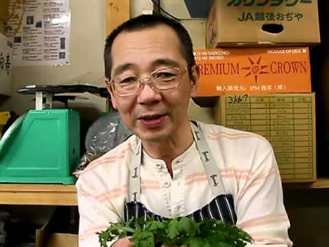 内田悟のやさい塾.tv:秋野菜(春菊・日野菜かぶ・暮坪かぶ)