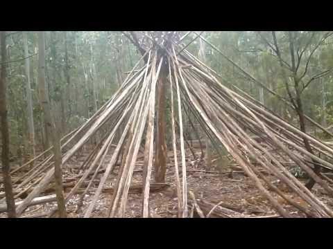 Strange Occult Pyramids In Forest. Illuminati Eye