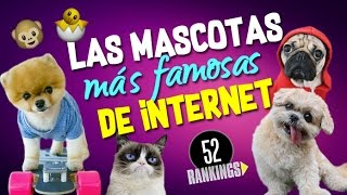 Video LAS MASCOTAS MÁS FAMOSAS DE INTERNET MP3, 3GP, MP4, WEBM, AVI, FLV Desember 2018