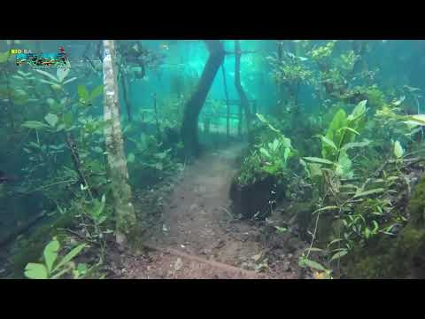 Heavy rain leaves trail under cristaline water and creates a rare and beautiful scenery