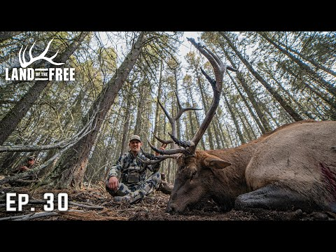 GIANT HERD BULL - A HUNT OF A LIFETIME | LOF3 EP. 30