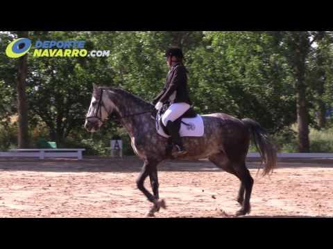 Campeonato Navarro de Doma 2017 - Añezcar (5)