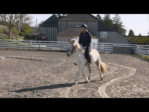 Watch Emily King and her 'new ride' 13hh Cracker