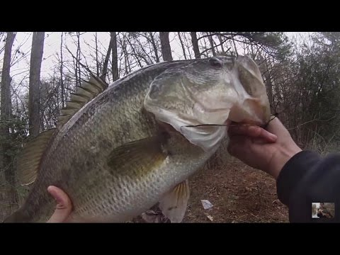 Pond fishing for huge spring bass (pre-spawn)