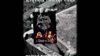 Download Lagu Maniac Butcher - Midnight empire Mp3