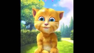Aplicación Talking Ginger 2 http://o7n.co/Ginger