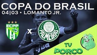 O Palmeiras deu susto, teve até Arouca expulso, mas o xodó alviverde voltou a brilhar. Com um gol e uma assistência, Robinho...