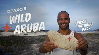 Aruba is home to beautiful hidden swimming holes, off the beaten path activities and much more.