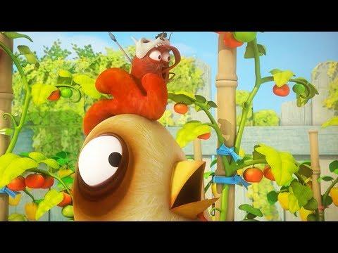 LARVA - WILD CHICKEN | Cartoon Movie | Cartoons For Children | Larva Cartoon | LARVA Official - Thời lượng: 43 phút.