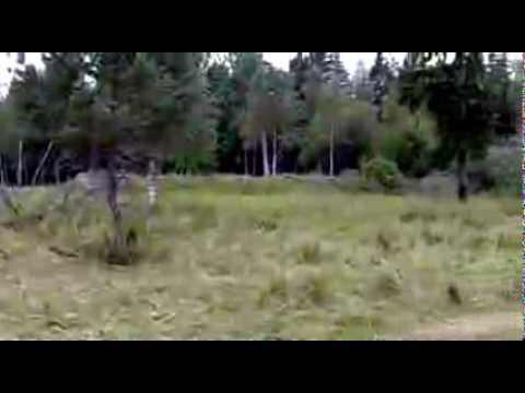 phát hiện được 30 lính bắn tỉa trong clip này?