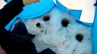 Зимняя рыбалка 2014 (winter Fishing)